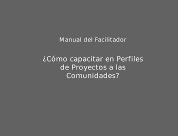 Manual perfiles de proyectos