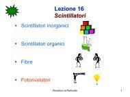 Lezione 16 Scintillatori - Fisica