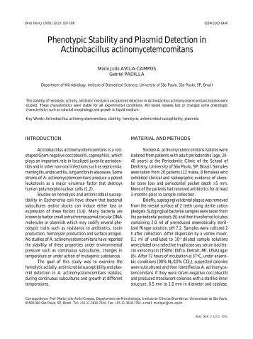 accutane and pregnancy