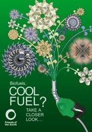 Biofuels leaflet - Friends of the Earth