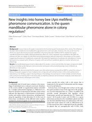 New insights into honey bee (Apis mellifera) - Frontiers in Zoology