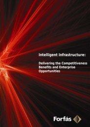 Intelligent Infrastructure: Delivering Competitiveness ... - Forfás