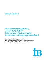 Berufseinstiegsbegleitung - Nationales Forum Beratung in Bildung ...