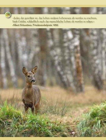 Erlebnisse mit Tieren - Magazin Freiheit für Tiere