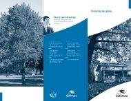 Protection des arbres - Ville de Gatineau