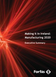 Making it in Ireland: Manufacturing 2020 -Executive Summary - Forfás