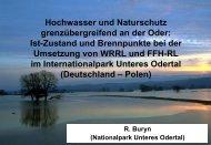 Hochwasser und Naturschutz grenzübergreifend an der Oder: Ist ...