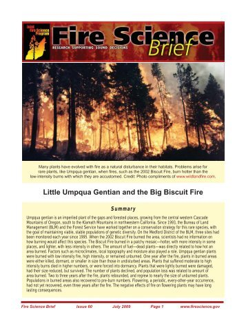 Little Umpqua Gentian and the Big Biscuit Fire - Joint Fire Science ...
