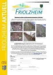 Friolzheim KW 14 ID 65806