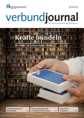 94/2013 - Forschungsverbund Berlin