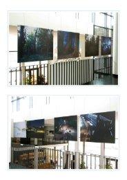 Bilder der Ausstellung - Galerie im Treppenhaus