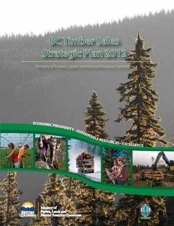 2012 Strategic Plan - Ministry of Forests, Lands and Natural ...