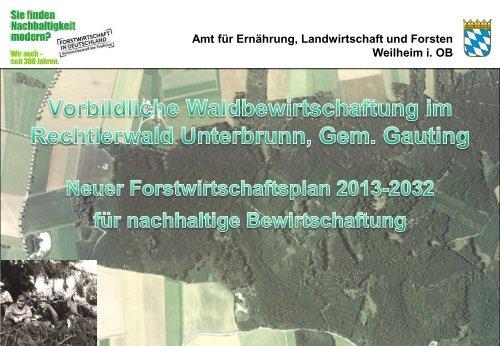 Amt für Ernährung, Landwirtschaft und Forsten Weilheim i ... - Gauting
