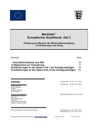 Merkblatt * Europäischer Sozialfonds Ziel 3 - Weiterbildung in ...