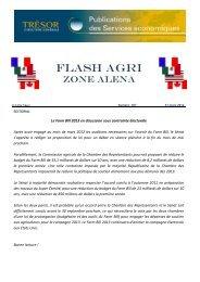 Flash Agri (Zone Alena)