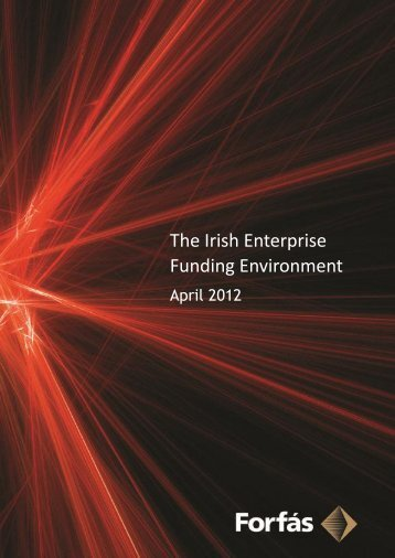 The Irish Enterprise Funding Environment (PDF, 39 pages ... - Forfás