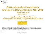 Entwicklung der erneubaren Energien in Deutschland im Jahr 2009