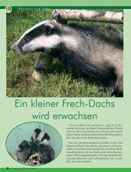 pdf-download - Freiheit für Tiere