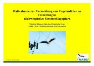 Maßnahmen zur Vermeidung von Vogelunfällen an Freileitungen ...