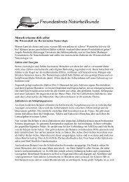 2012.43 Bericht Numerologie - Freundeskreis Naturheilkunde ...
