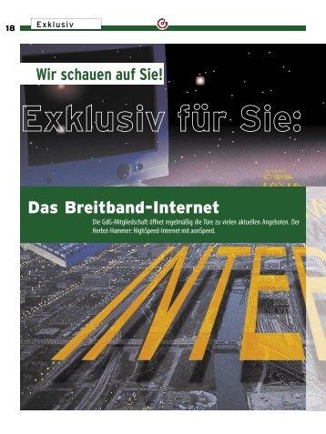 Das Breitband-Internet - fsg gemeinsam aktiv