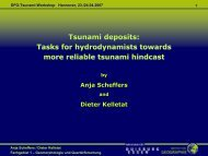 Tsunami deposits: Tasks for hydrodynamists towards more ... - FZK
