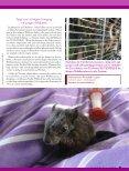 pdf-download - Magazin Freiheit für Tiere - Seite 2
