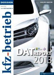 DAT-Report 2013
