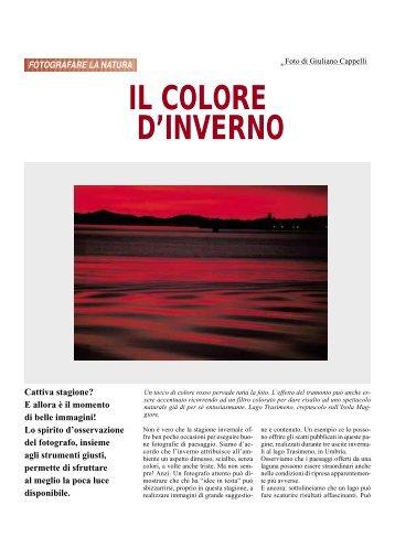 IL COLORE D'INVERNO - Fotografia.it