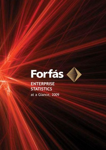 Enterprise Statistics at a Glance 2009 - Forfás