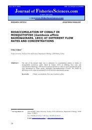 BIOACCUMULATION OF COBALT IN MOSQUITOFISH (Gambusia ...