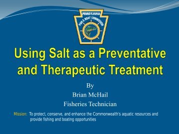 Using Salt as a Preventative and Therapeutic Treatment