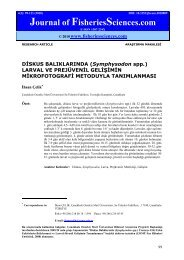 D?SKUS BALIKLARINDA (Symphysodon spp.) LARVAL VE ...