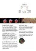 mabit - Norges forskningsråd - Page 5