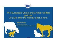 1.4 andrea animal welfare strategy
