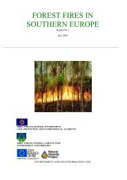 forest fires in southern europe - European Commission - Europa