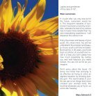 Wear Sunscreen - Page 3