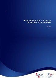SYNTHESE DE L'ETUDE MARCHE ALLEMAND
