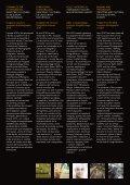 Pieghevole (.pdf 878 KB ) - FSNews - Page 3