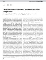 Three-dimensional structure determination from a single view