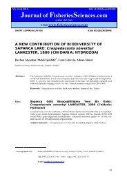 A NEW CONTRIBUTION OF BIODIVERSITY OF SAPANCA LAKE ...