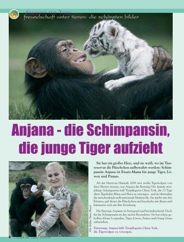 Tiernachrichten - Magazin Freiheit für Tiere