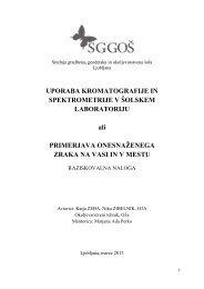 poročilo in izdelek - Focus