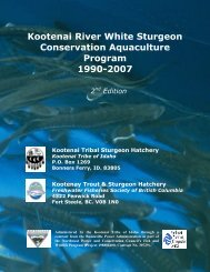 Kootenai River White Sturgeon Conservation Aquaculture Program ...
