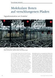 Molekulare-Boten_14-21 - Forschung Frankfurt - Goethe-Universität