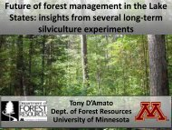 Lake States Overview - The University of Maine - School of Forest ...