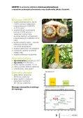 katalog odmian kukurydzy 2013 - FiN Agro Polska - Page 5