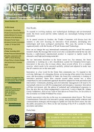 26_Timber Newsletter.pdf - The Global Fire Monitoring Center (GFMC)