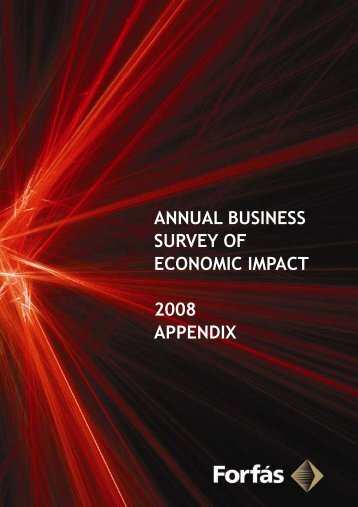 annual business survey of economic impact 2008 appendix - Forfás