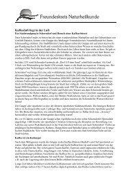 2012.31 Bericht Ausflug Schorndorf - Freundeskreis Naturheilkunde ...